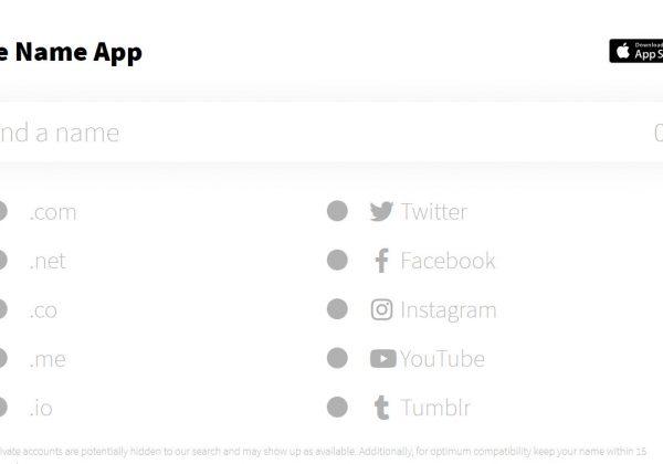 The name app ti aiuta a cercare il dominio per il nome della tua startup.