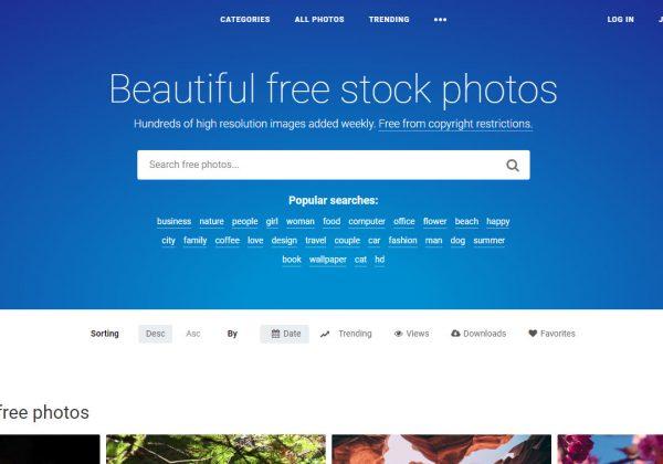 StockSnap.io ha una vasta selezione di bellissime foto d'archivio, gratuite, e immagini ad alta risoluzione.
